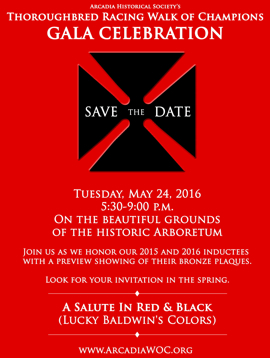 'Salute in Red and Black' on May 24